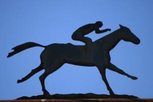 horse rider sillouhette